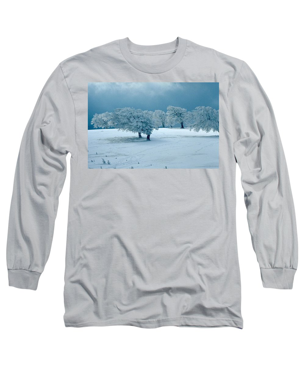 Winter Long Sleeve T-Shirt featuring the photograph Winter Wonderland by Flavia Westerwelle