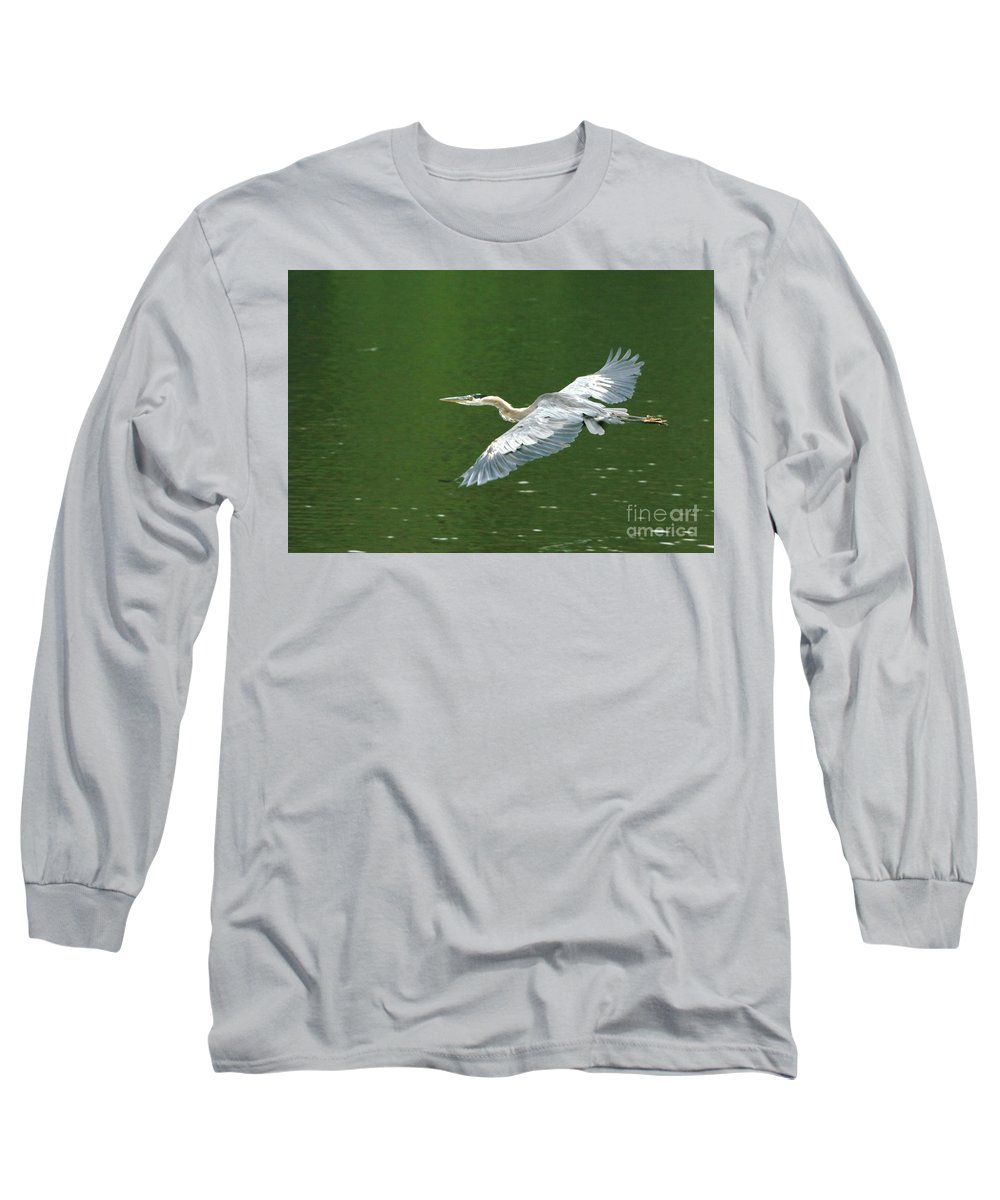 Landscape Nature Wildlife Bird Crane Heron Green Flight Ohio Water Long Sleeve T-Shirt featuring the photograph Young Great Blue Heron Taking Flight by Dawn Downour