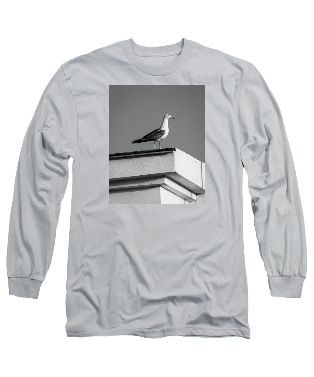 Seagull Long Sleeve T-Shirt featuring the photograph Facing The Summer by Borja Robles