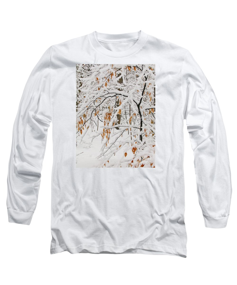 Winter Long Sleeve T-Shirt featuring the photograph Winter Branches by Ann Horn