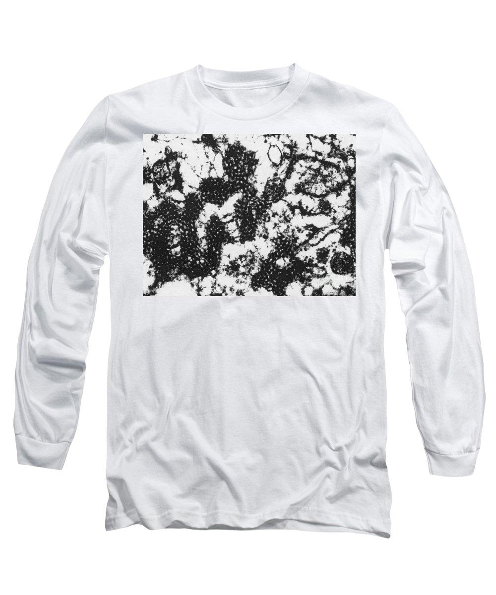 Foot-and-mouth Disease Virus Long Sleeve T-Shirts