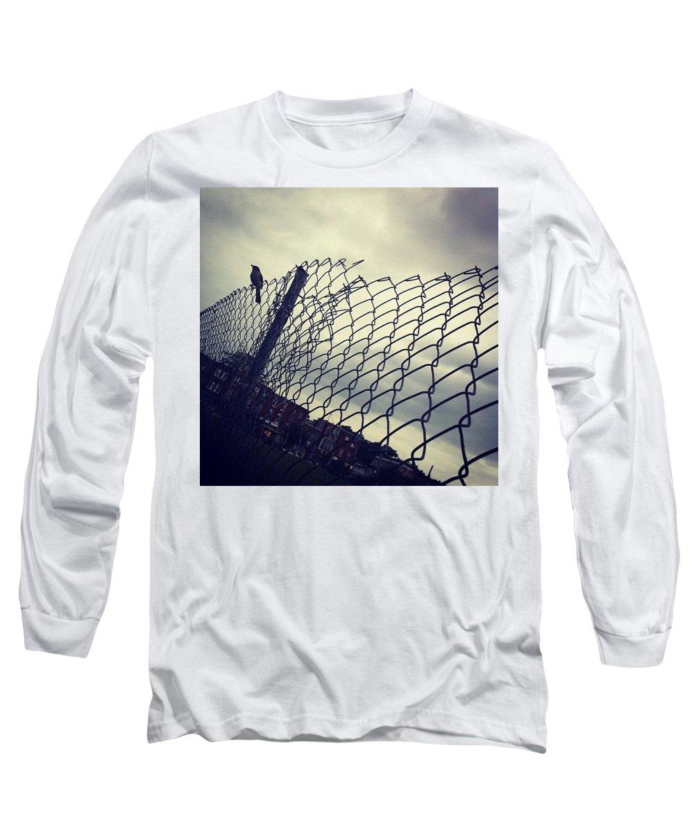 Mockingbird Long Sleeve T-Shirt featuring the photograph Mock. Yeah! Ing. Yeah! Bird. Yeah! by Katie Cupcakes