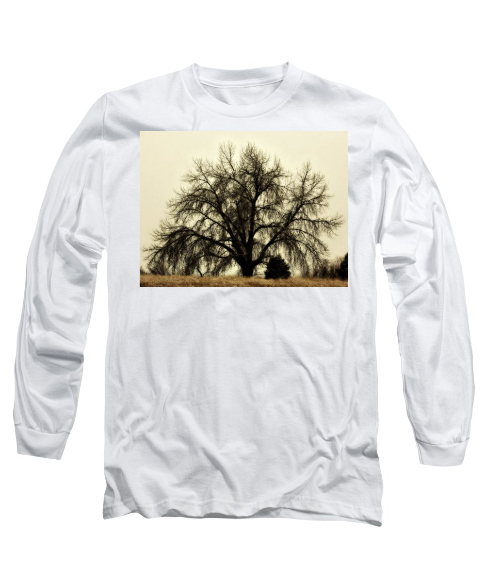 Tree Long Sleeve T-Shirt featuring the photograph A Winter's Day by Marilyn Hunt