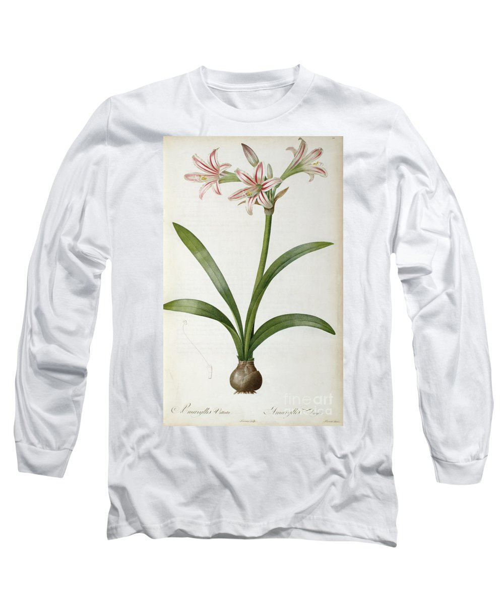 Amaryllis Long Sleeve T-Shirt featuring the painting Amaryllis Vittata by Pierre Redoute