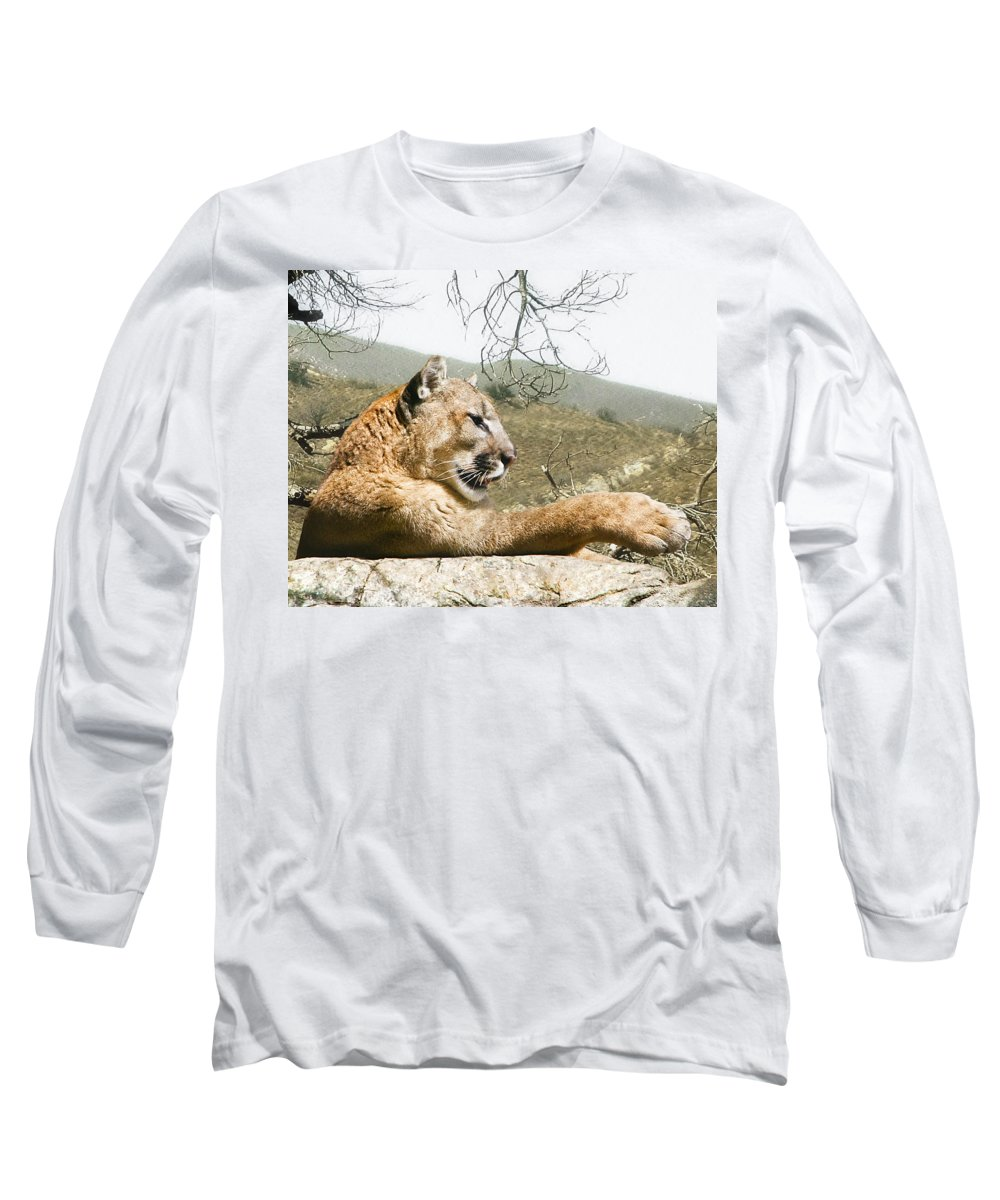 Cougar Long Sleeve T-Shirt featuring the photograph California Cougar by Lynn Andrews