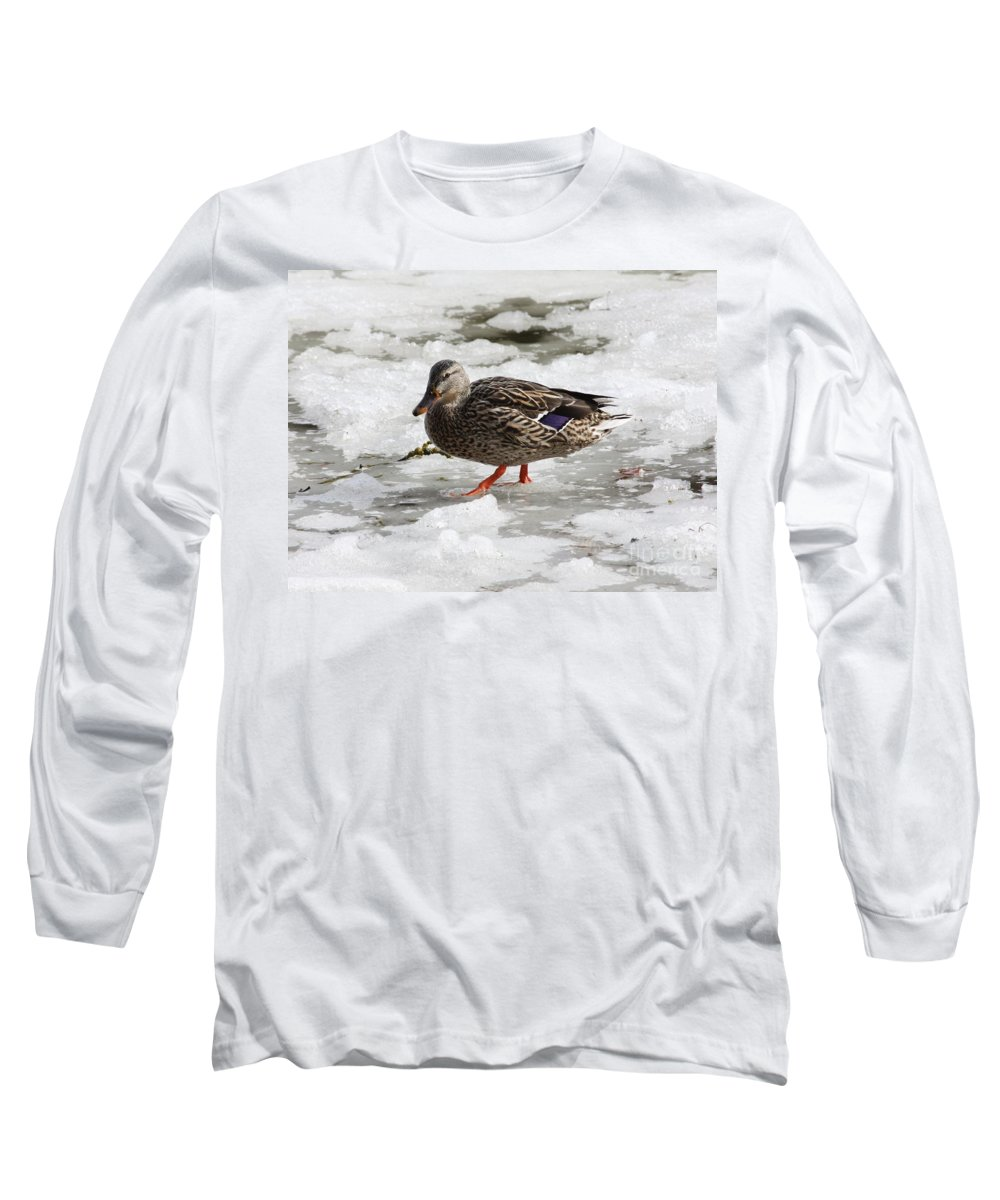 Duck Long Sleeve T-Shirt featuring the photograph Duck Walking On Thin Ice by Carol Groenen