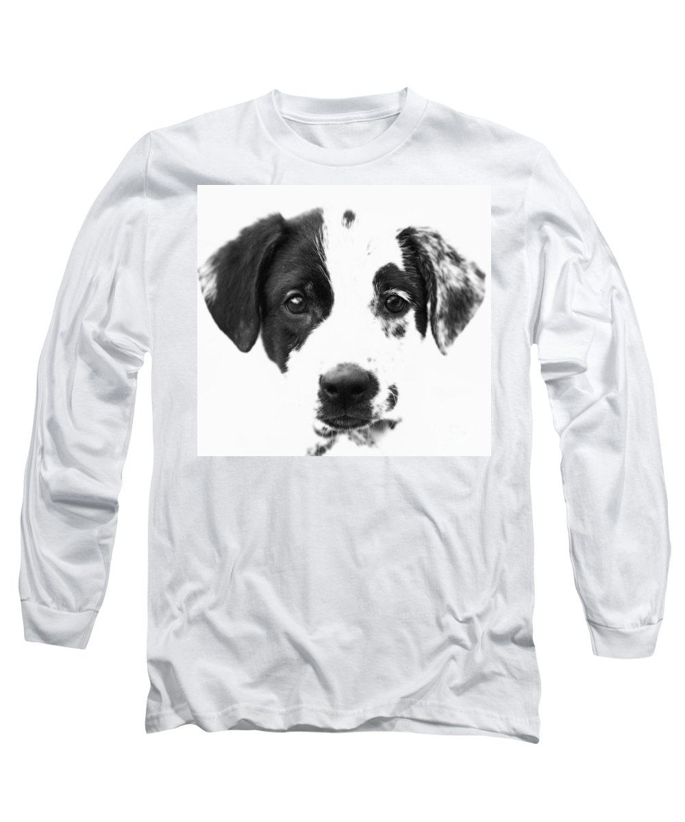 Dogs Long Sleeve T-Shirt featuring the photograph Karma by Amanda Barcon