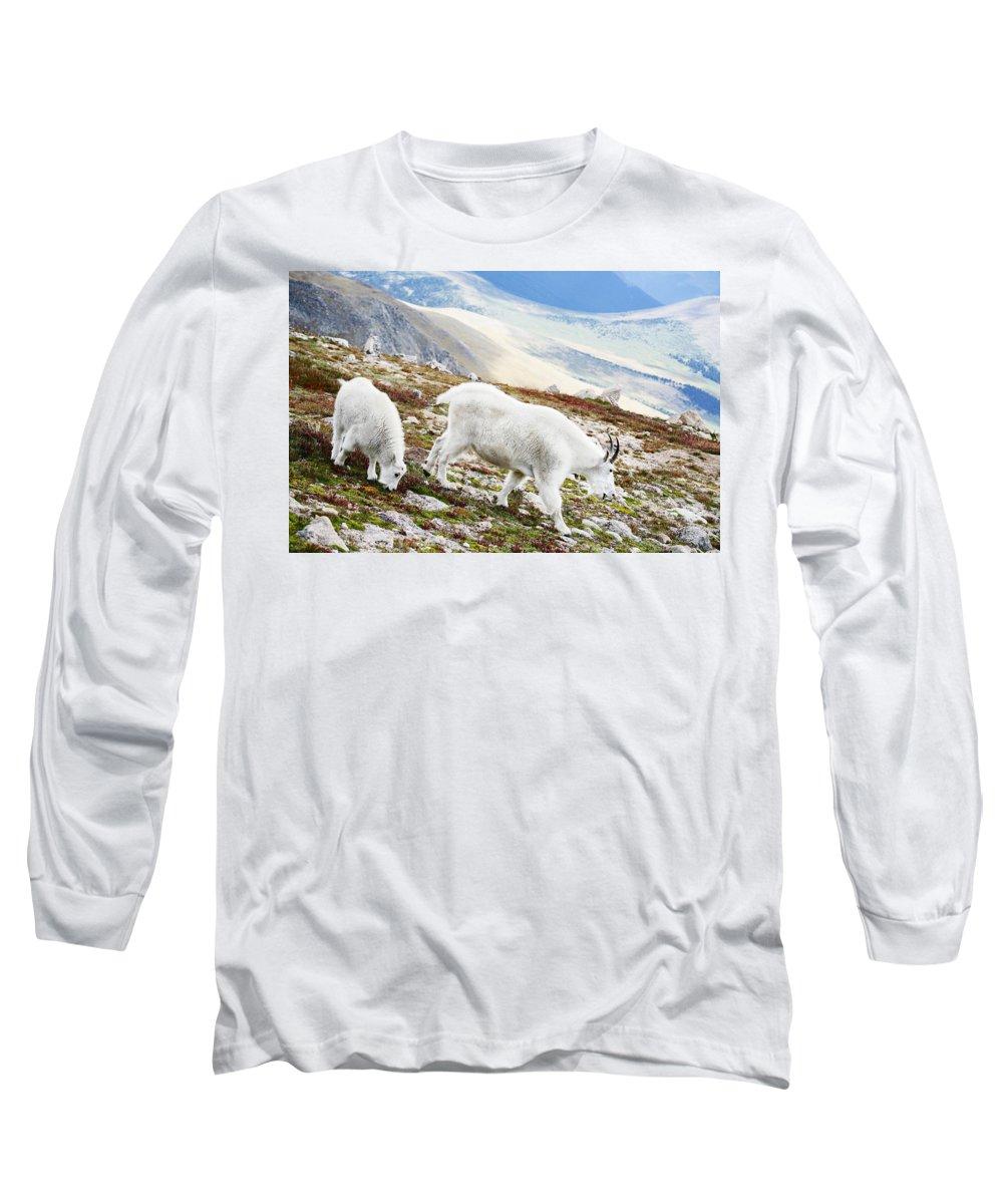 Mountain Long Sleeve T-Shirt featuring the photograph Mountain Goats 1 by Marilyn Hunt