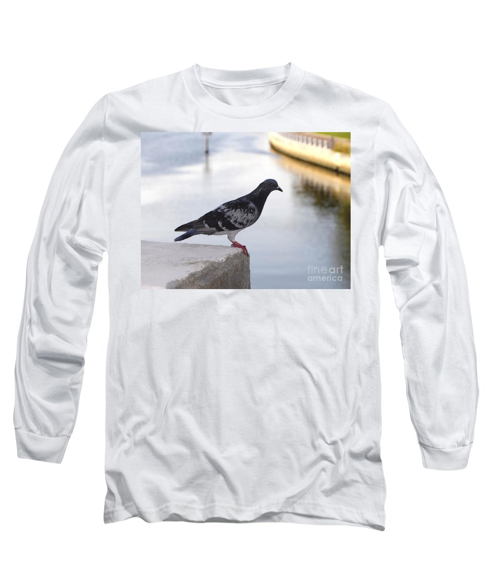 Pigeon Long Sleeve T-Shirt featuring the photograph Pigeon By The River by David Lee Thompson