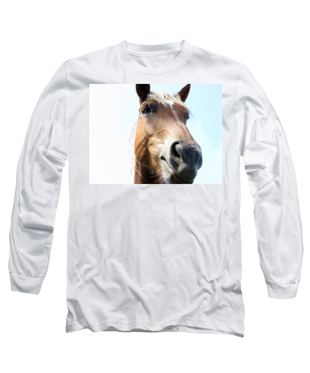 Horse Long Sleeve T-Shirt featuring the photograph Really by Amanda Barcon