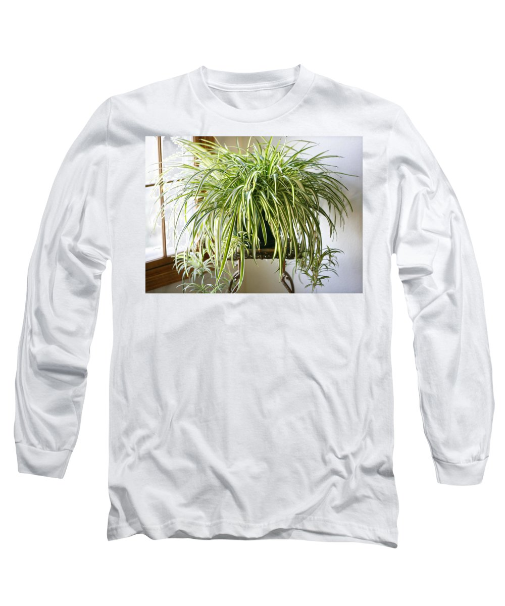 Spider Plant Long Sleeve T-Shirt featuring the photograph Spider Plant by Marilyn Hunt