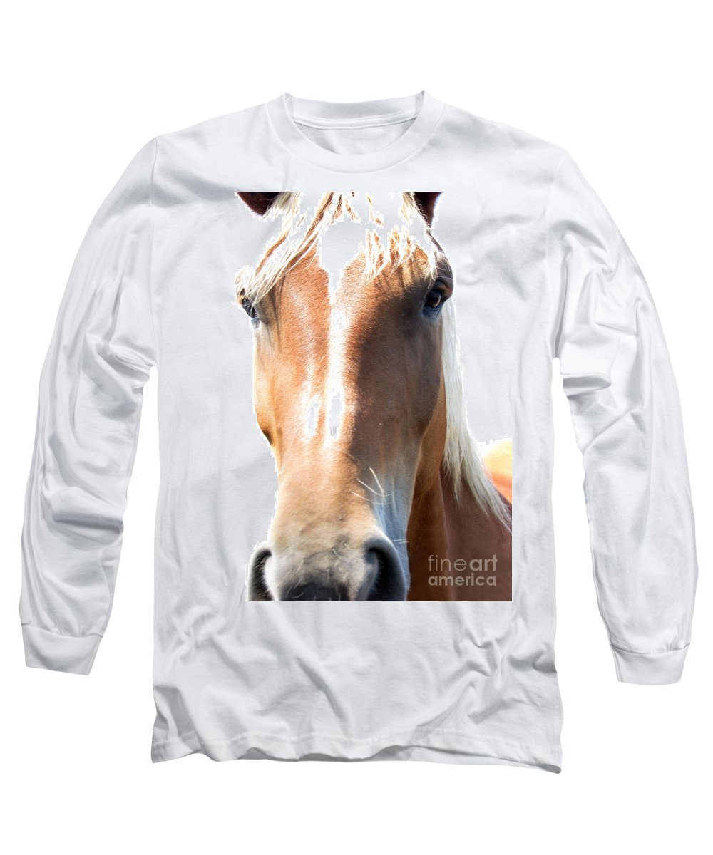Horse Long Sleeve T-Shirt featuring the photograph Sweetie by Amanda Barcon