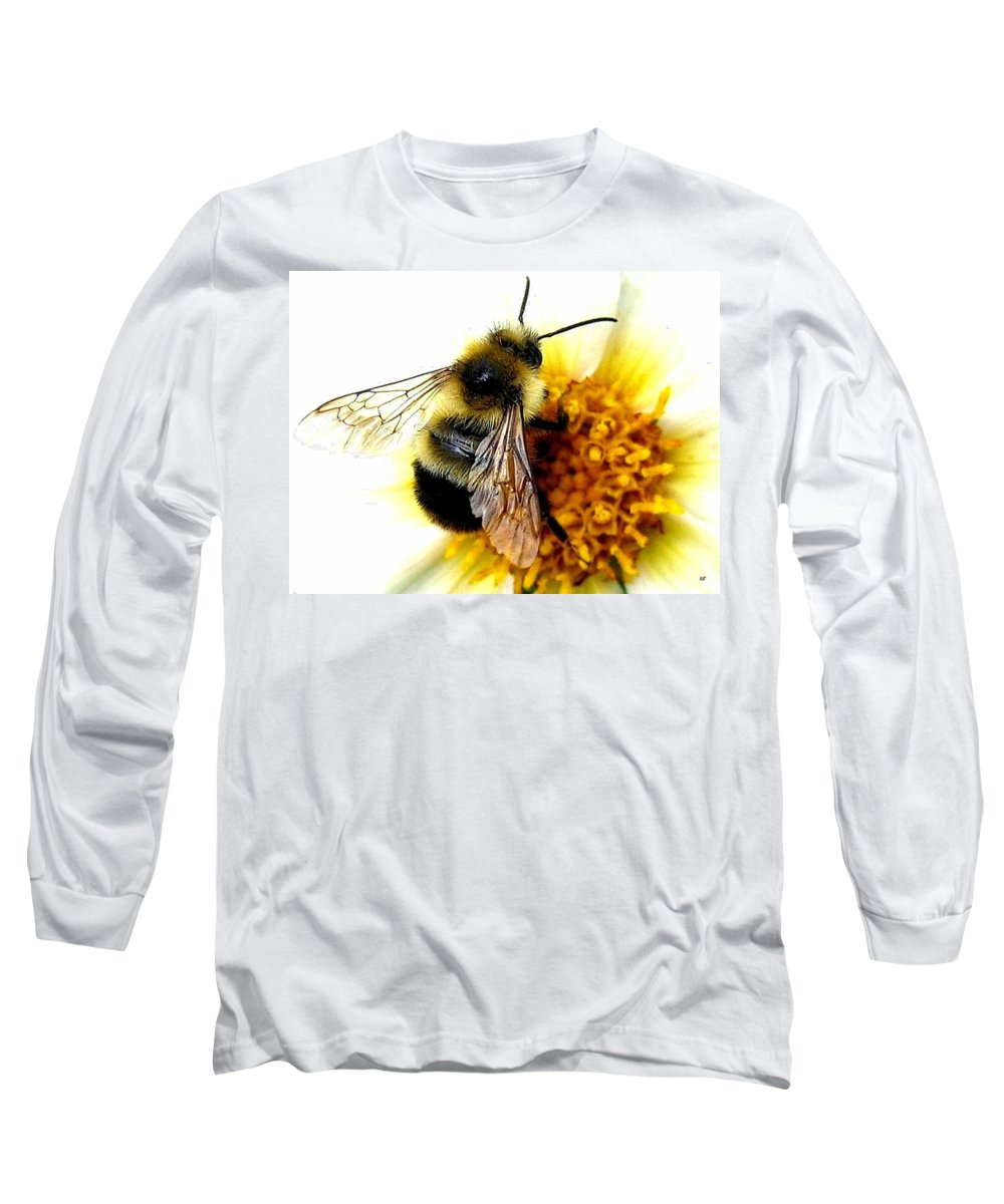 Honeybee Long Sleeve T-Shirt featuring the photograph The Buzz by Will Borden