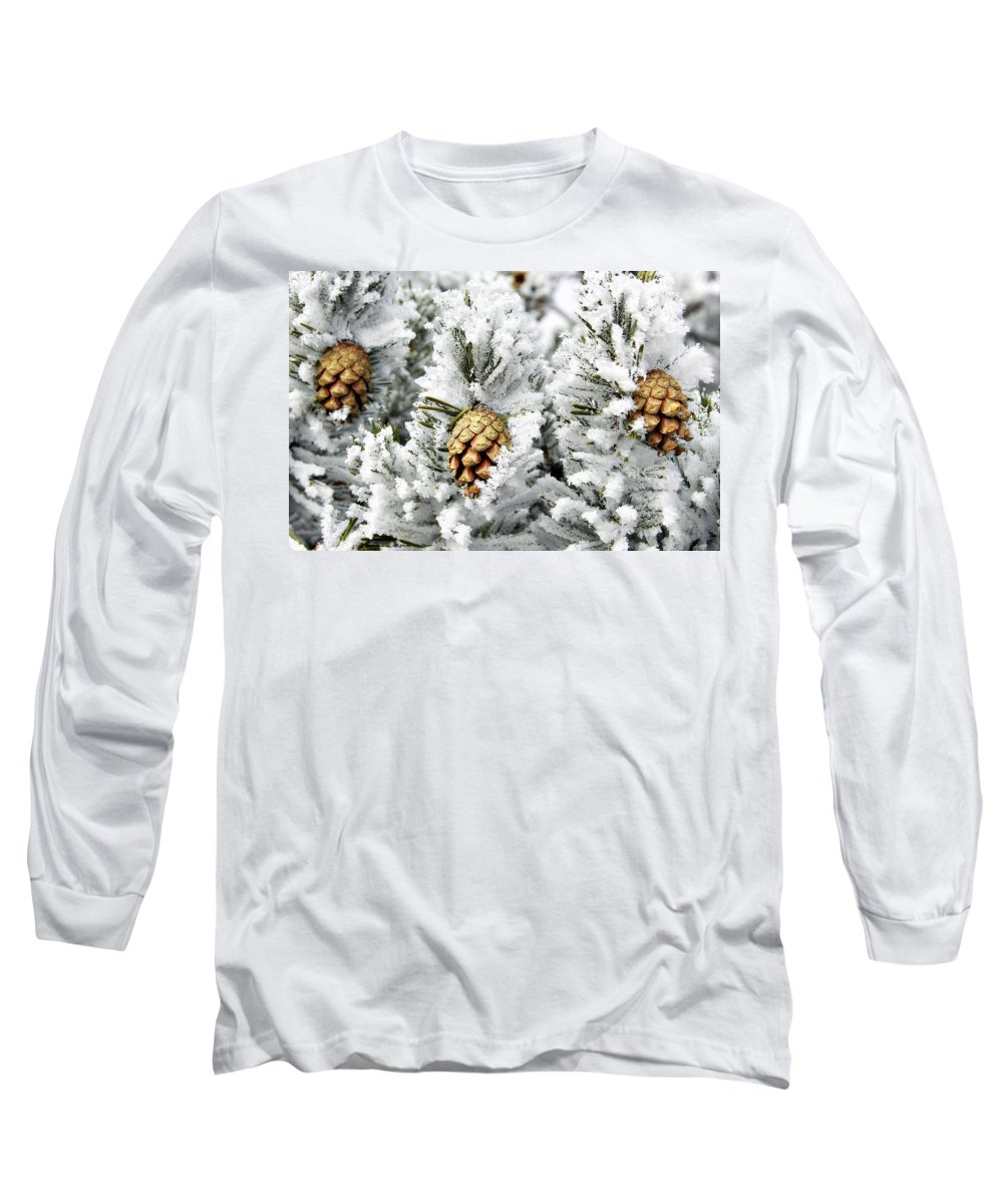 Frosty Long Sleeve T-Shirt featuring the photograph Three Pinecones by Marilyn Hunt