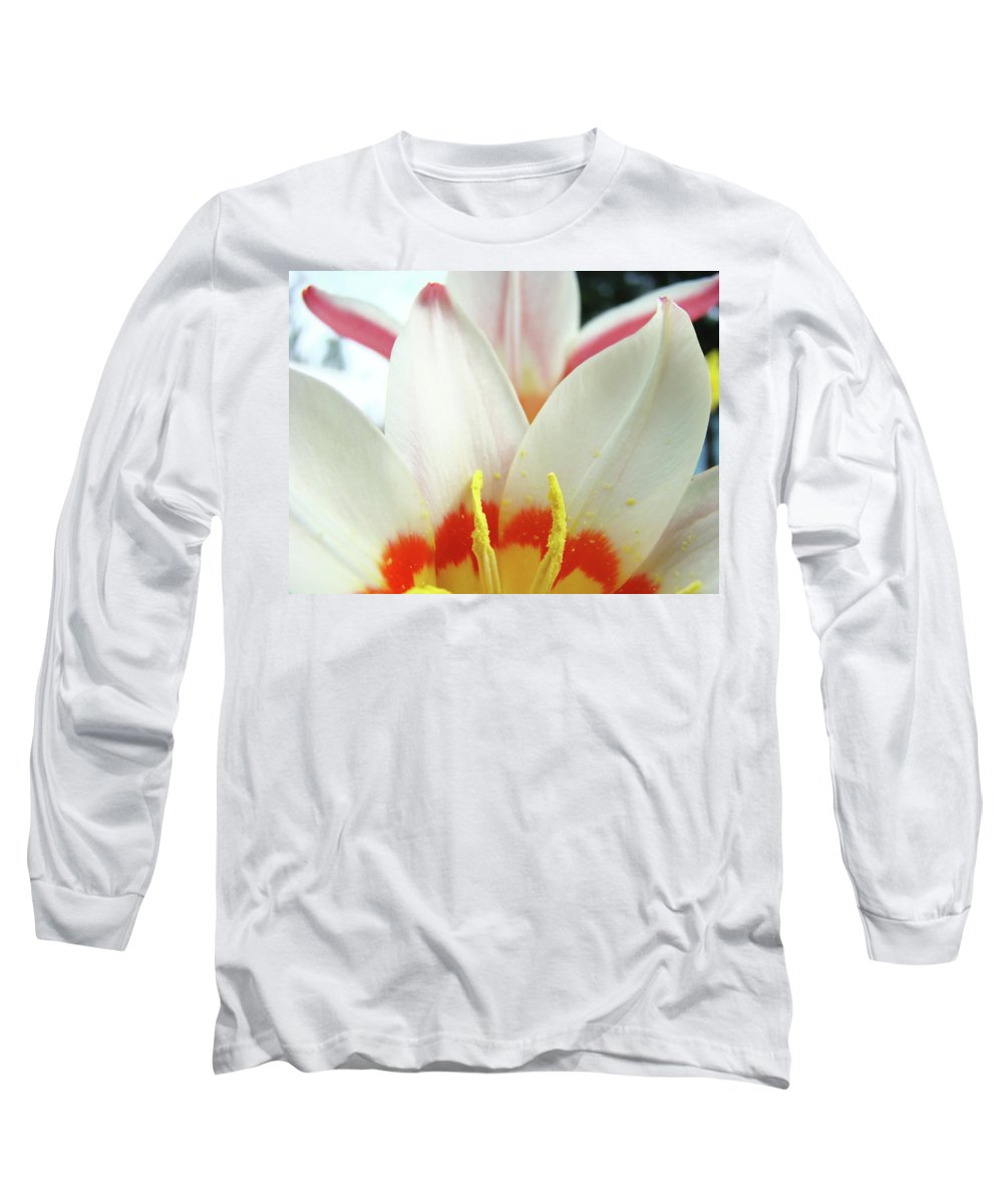 �tulips Artwork� Long Sleeve T-Shirt featuring the photograph Tulip Flowers Art Prints 4 Spring White Tulip Flower Macro Floral Art Nature by Baslee Troutman