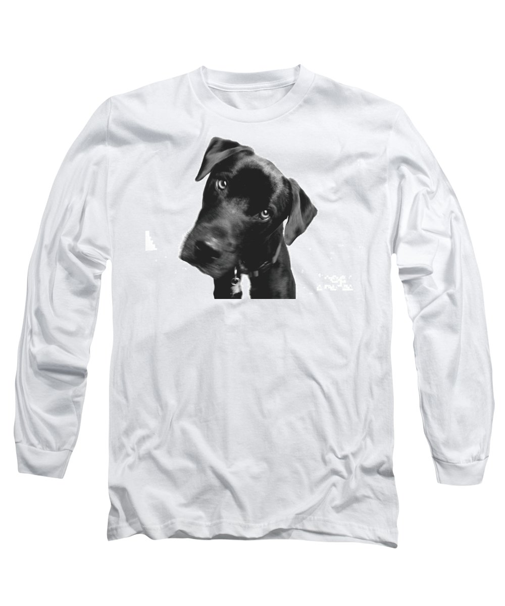 Labrador Long Sleeve T-Shirt featuring the photograph What by Amanda Barcon