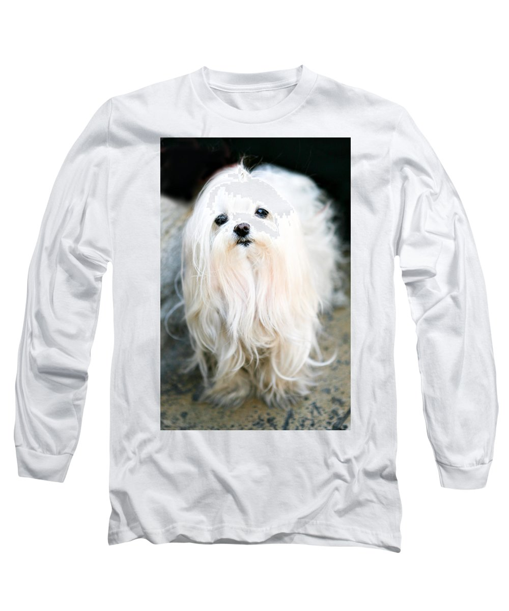 Small Long Sleeve T-Shirt featuring the photograph White Fluff by Marilyn Hunt