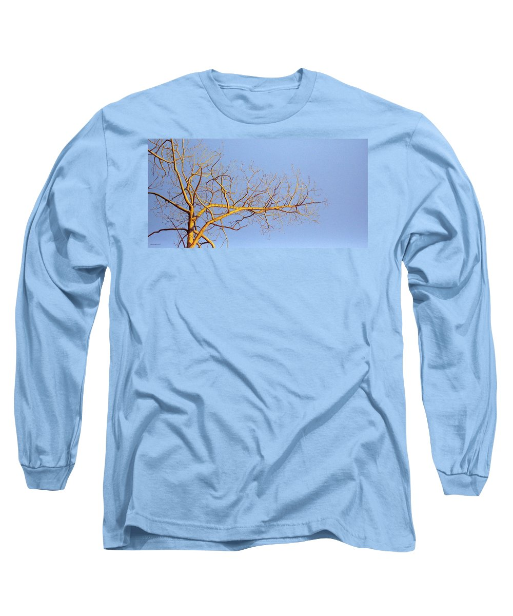Aspen Painting Long Sleeve T-Shirt featuring the painting Aspen In The Autumn Sun by Elaine Booth-Kallweit