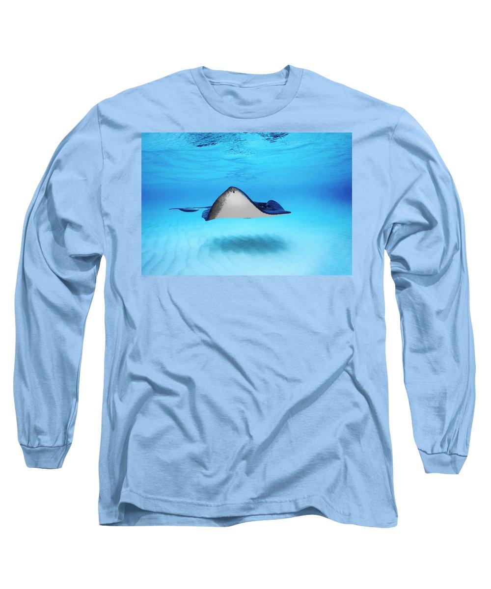Dasyatis Americana Long Sleeve T-Shirts