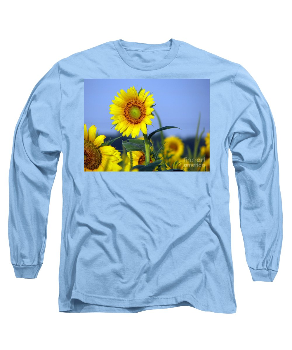 Sunflower Long Sleeve T-Shirt featuring the photograph Getting To The Sun by Amanda Barcon