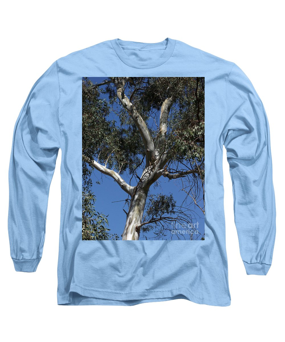 Trees Long Sleeve T-Shirt featuring the photograph Eucalyptus by Kathy McClure