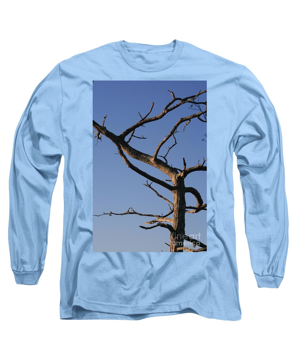 Tree Long Sleeve T-Shirt featuring the photograph Gnarly Tree by Nadine Rippelmeyer