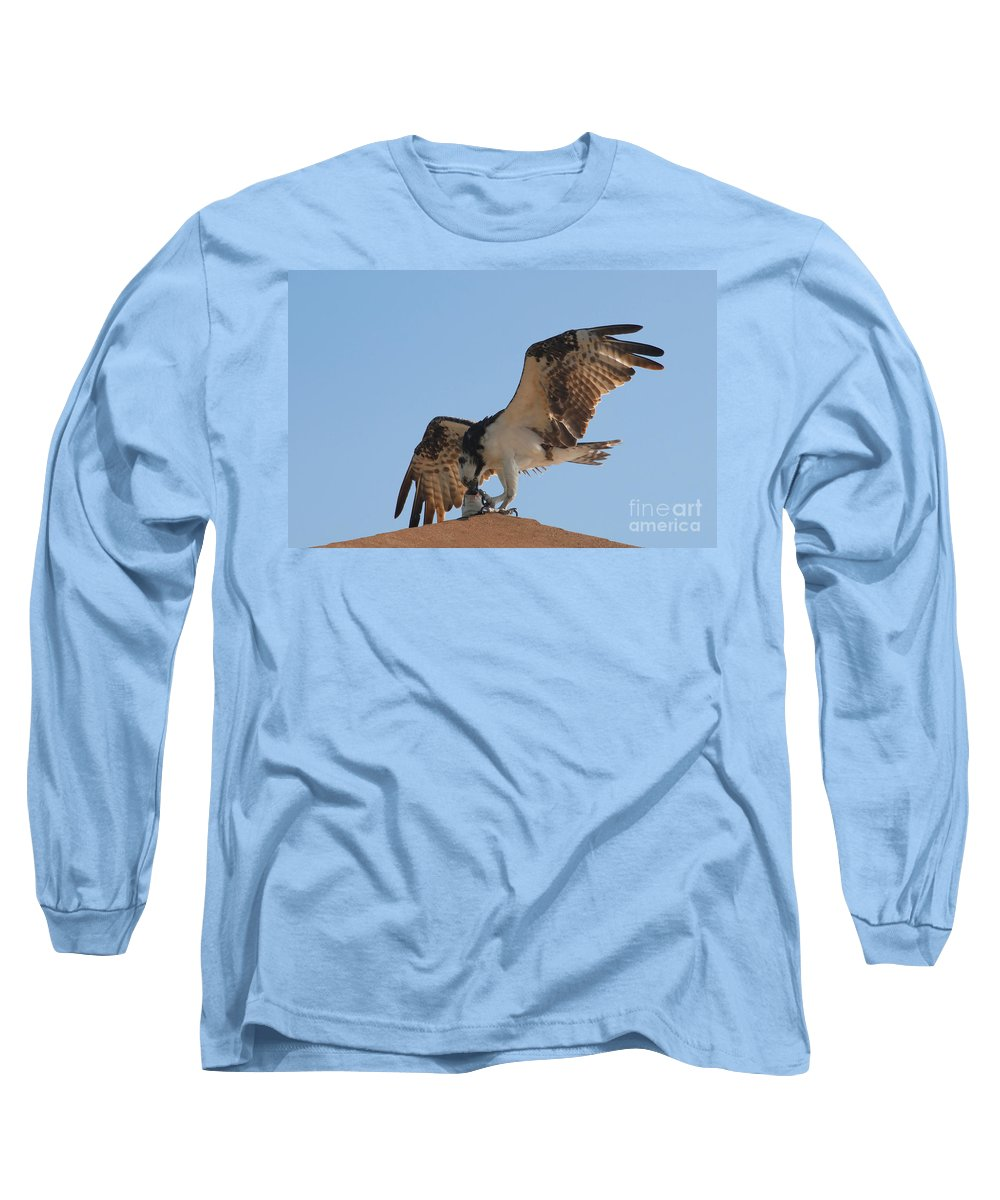 Osprey Long Sleeve T-Shirt featuring the photograph Osprey by David Lee Thompson