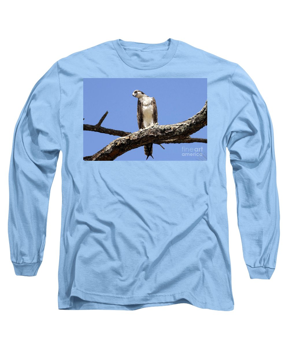 Osprey Long Sleeve T-Shirt featuring the photograph Osprey In The Trees by David Lee Thompson