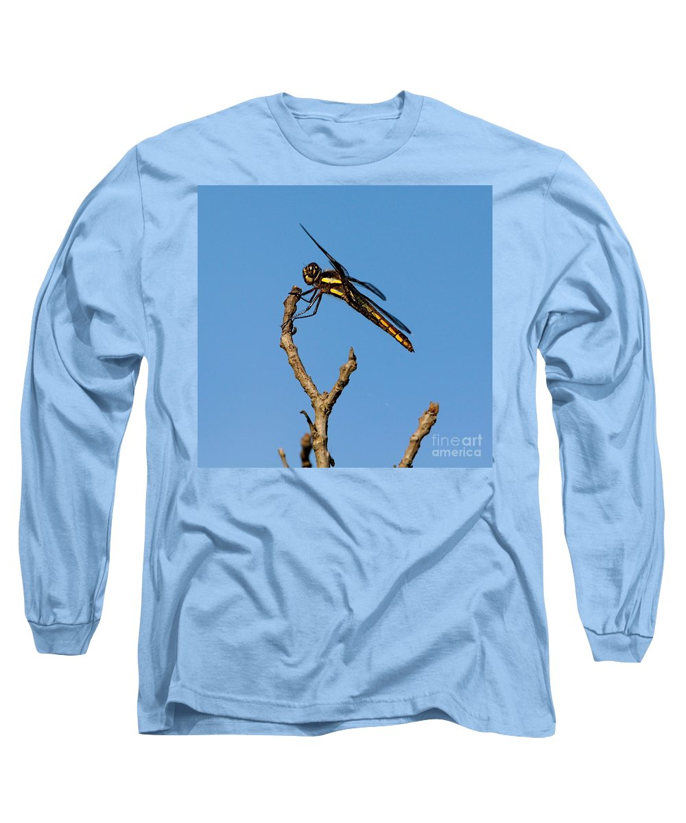 Insect Long Sleeve T-Shirt featuring the photograph The Landing Pad by Robert Pearson