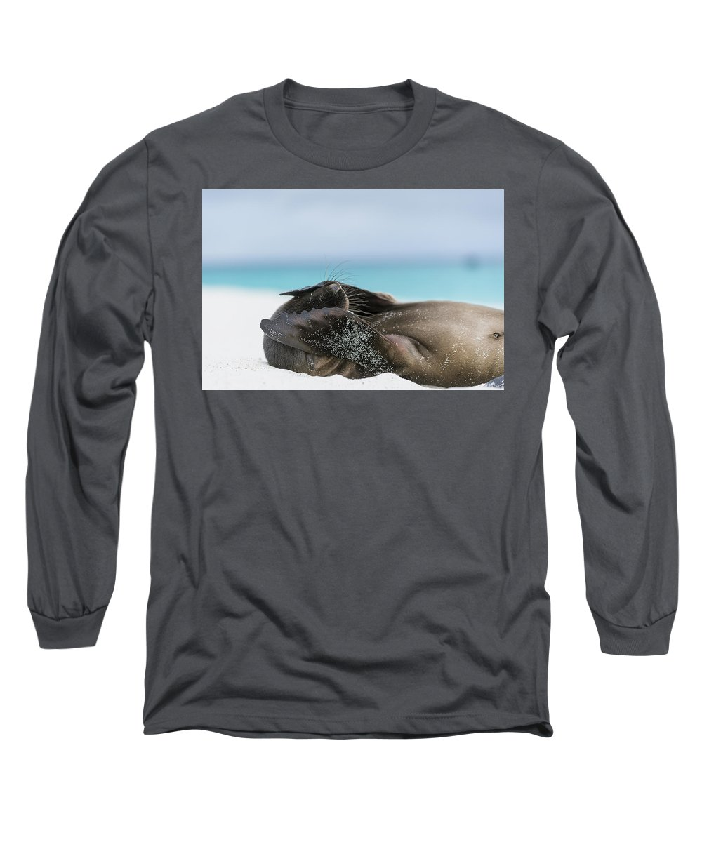 Tui De Roy Long Sleeve T-Shirt featuring the photograph Galapagos Sea Lion Pup Covering Face by Tui De Roy