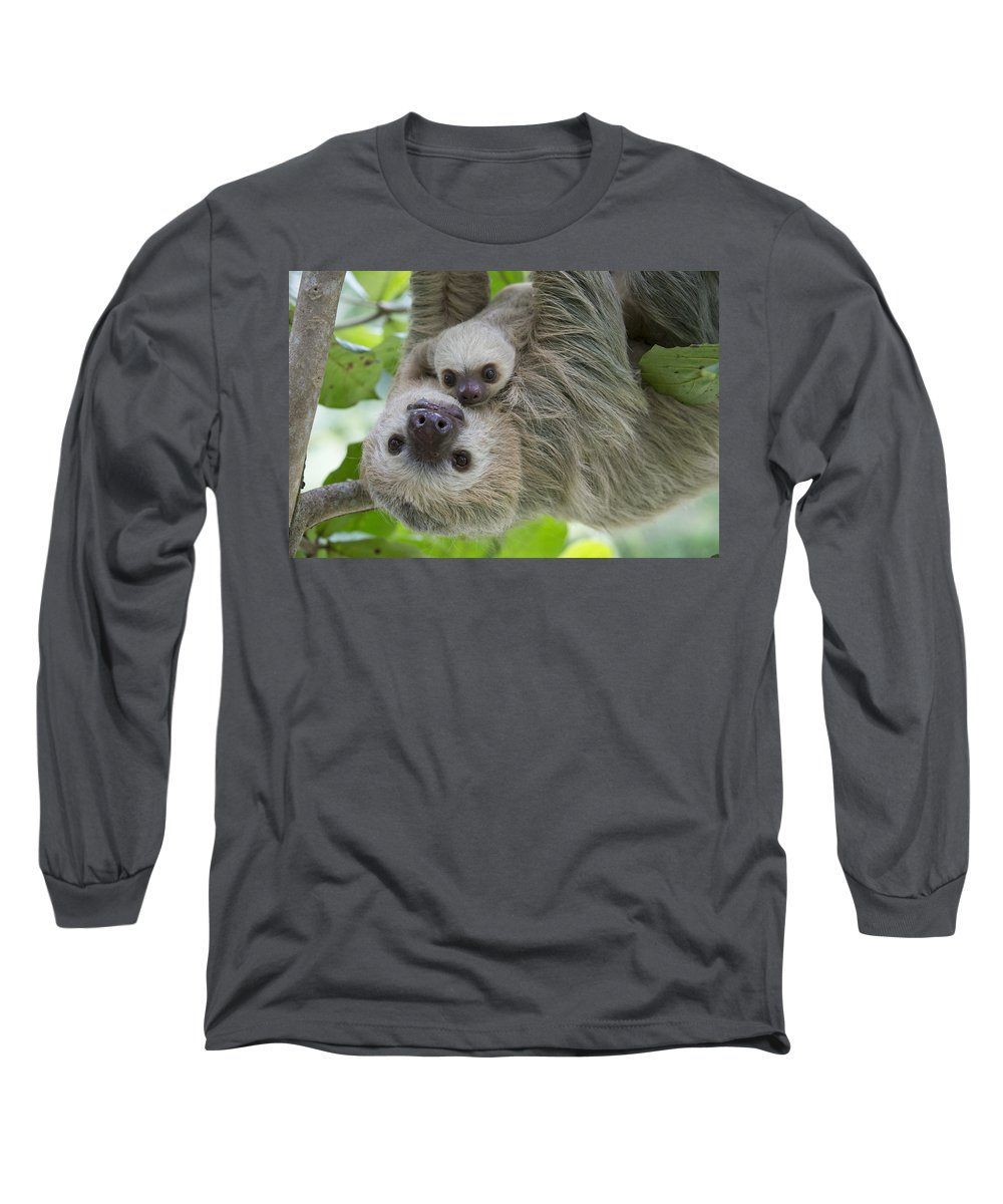 Suzi Eszterhas Long Sleeve T-Shirt featuring the photograph Hoffmanns Two-toed Sloth And Old Baby by Suzi Eszterhas
