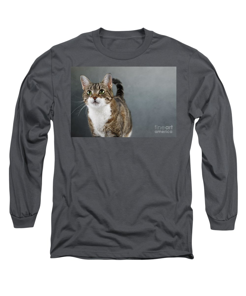 Cat Long Sleeve T-Shirt featuring the photograph Cat Portrait by Nailia Schwarz