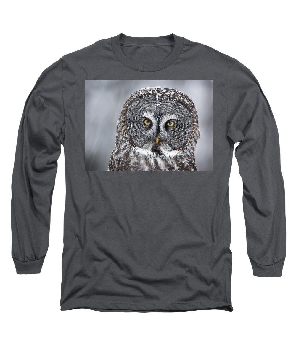 Nis Long Sleeve T-Shirt featuring the photograph Great Gray Owl Scowl Minnesota by Benjamin Olson