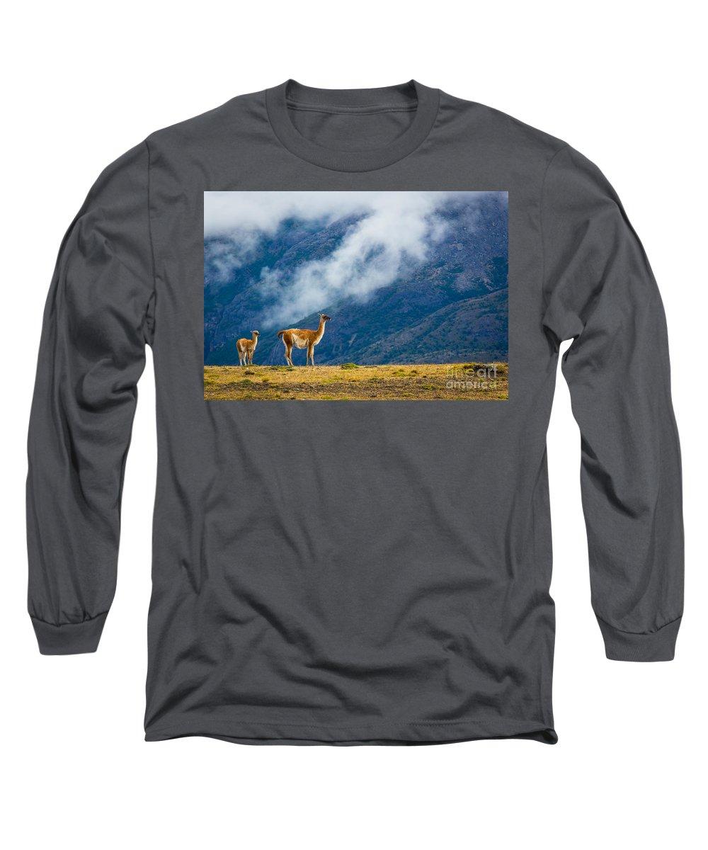Guanaco Long Sleeve T-Shirts