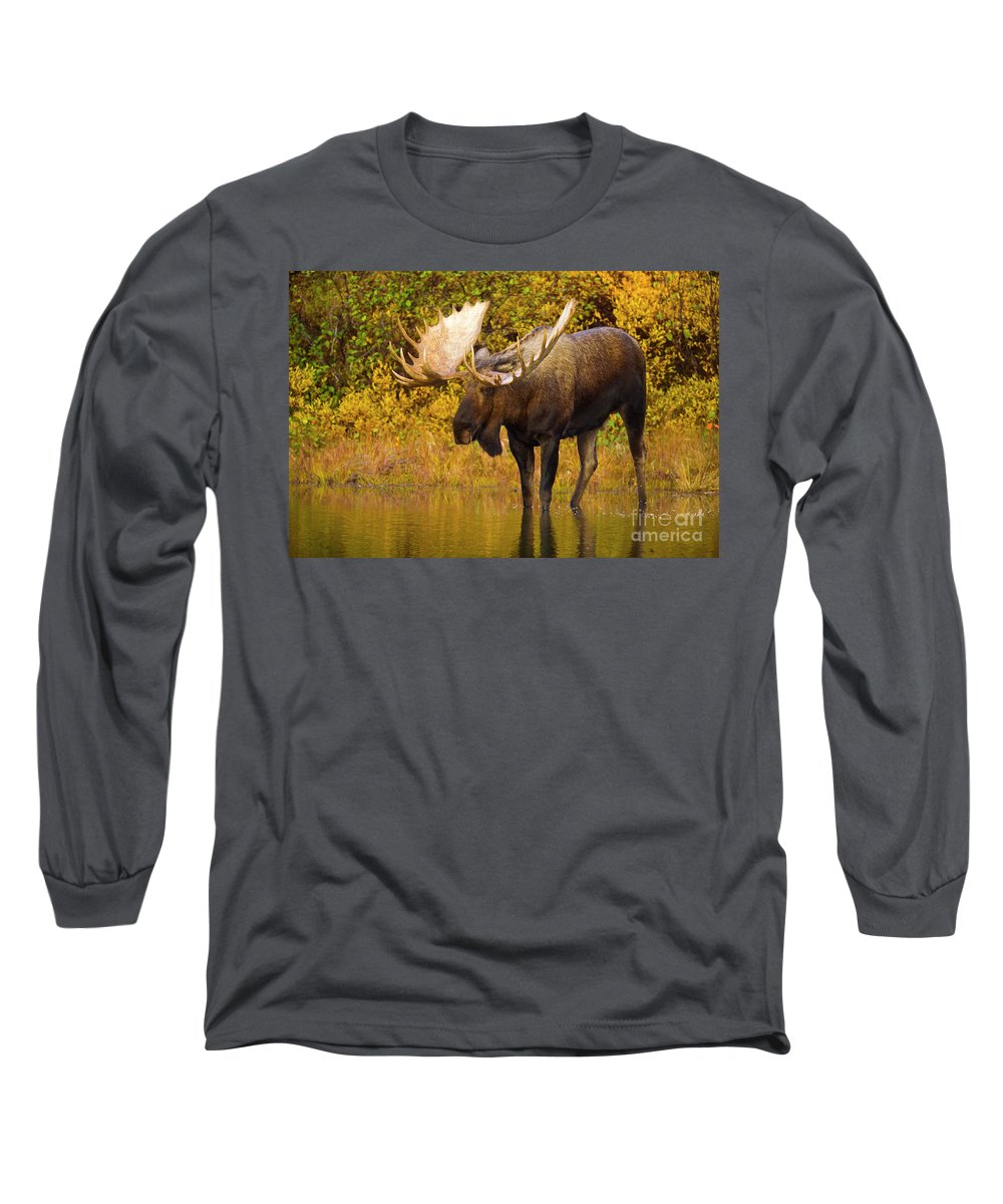 00345399 Long Sleeve T-Shirt featuring the photograph Moose In Glacial Kettle Pond by Yva Momatiuk John Eastcott