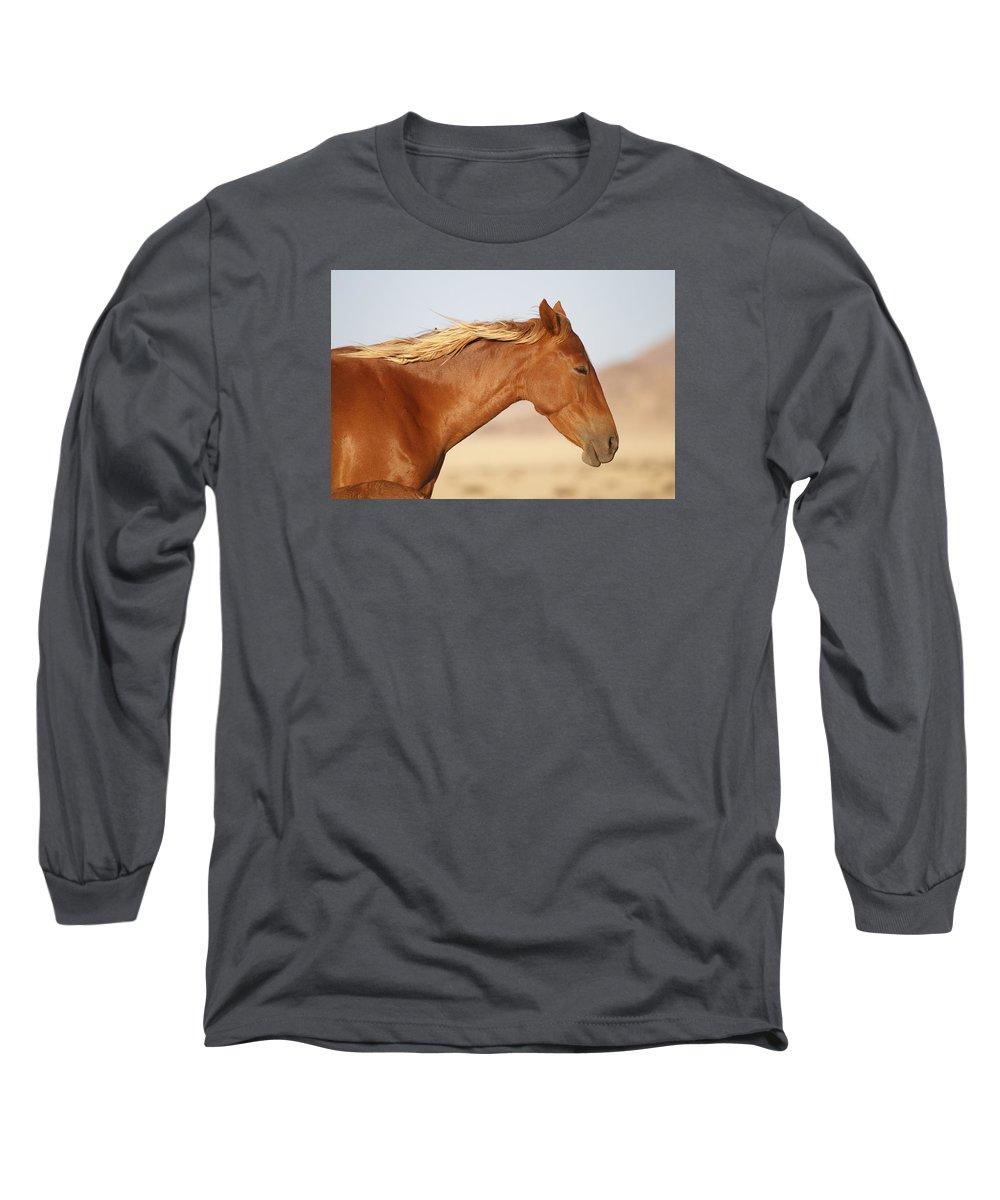 Vincent Grafhorst Long Sleeve T-Shirt featuring the photograph Namib Desert Mare by Vincent Grafhorst