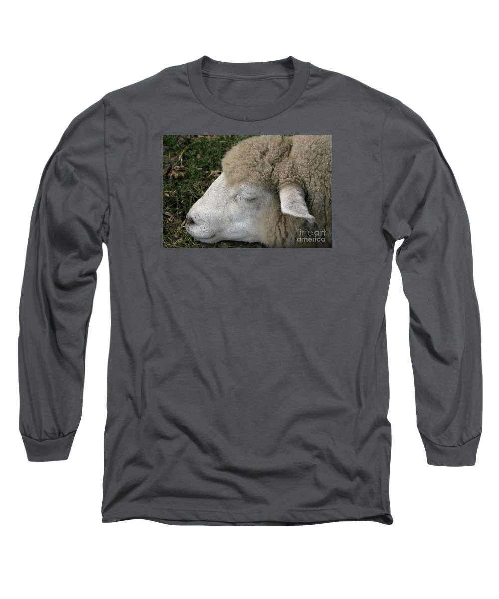 Sheep Long Sleeve T-Shirt featuring the photograph Sheep Sleep by Ann Horn