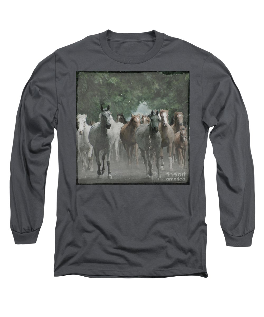 Arabian Long Sleeve T-Shirt featuring the photograph The Horsechestnut Tree Avenue by Angel Ciesniarska