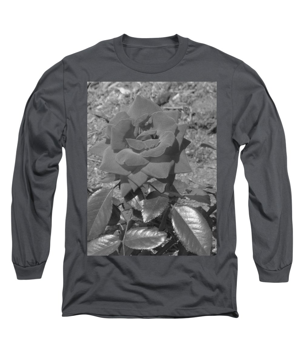 Rose Long Sleeve T-Shirt featuring the photograph Velvet Rose by Pharris Art