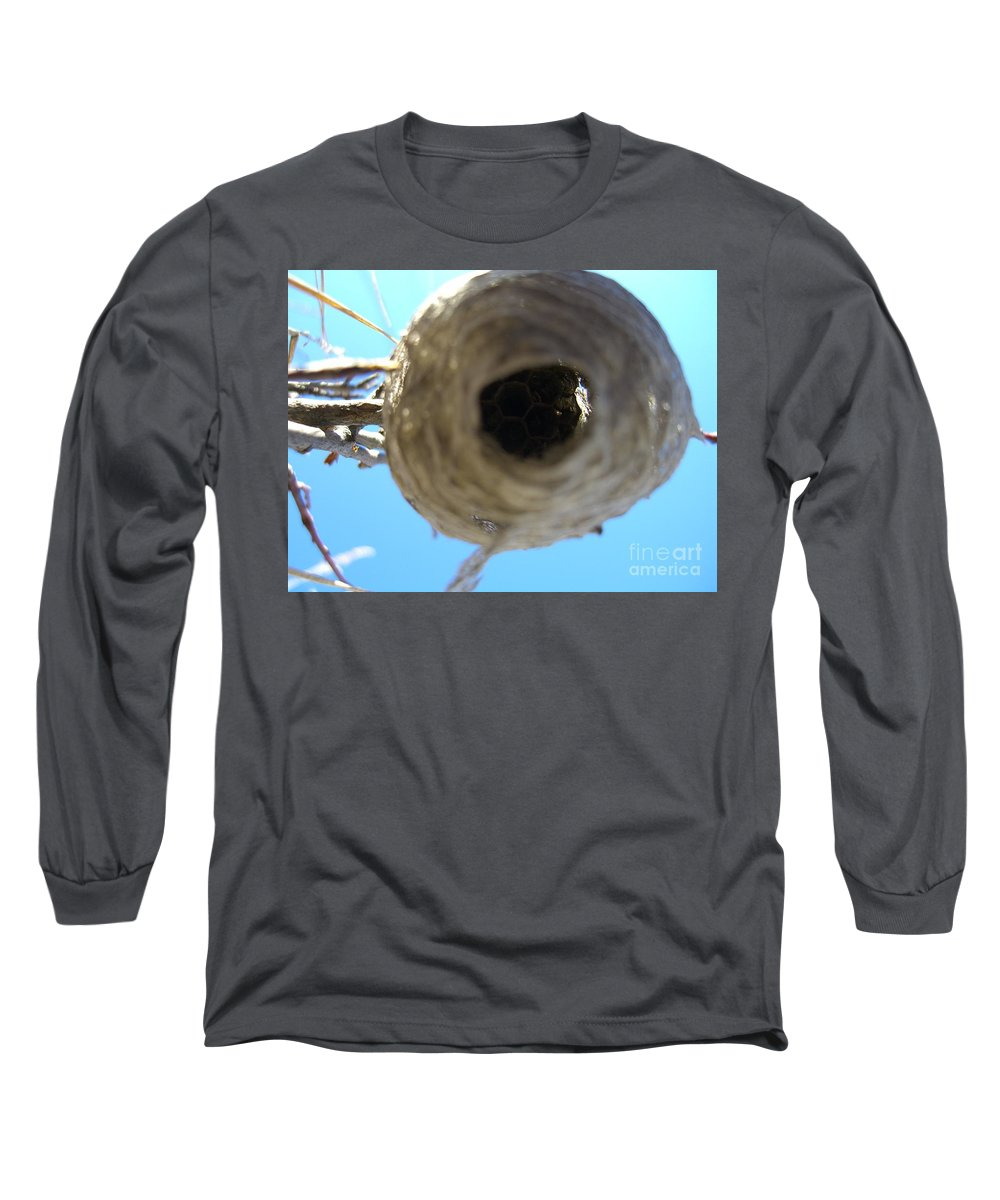 Photograph Bee Hive Blue Sky Branch Insect Long Sleeve T-Shirt featuring the photograph Bee Hive by Seon-Jeong Kim