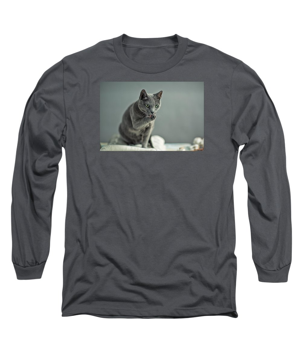 Catlick Long Sleeve T-Shirt featuring the photograph Russian Blue by Nailia Schwarz