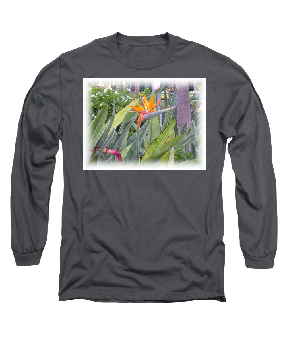 Plant Long Sleeve T-Shirt featuring the photograph A Bird In Paradise by Maria Bonnier-Perez