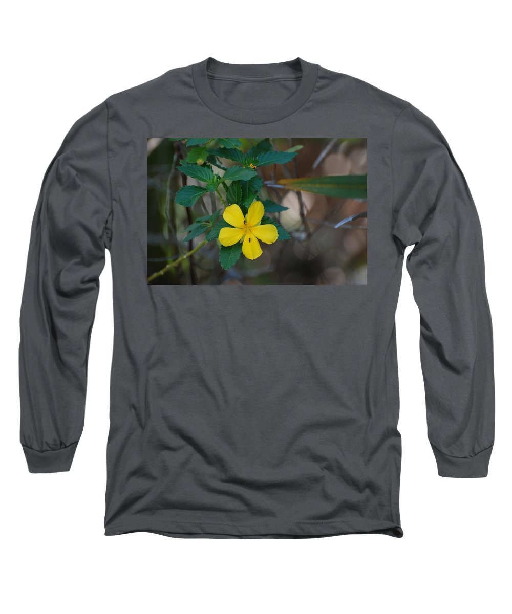 Macro Long Sleeve T-Shirt featuring the photograph Ant Flowers by Rob Hans