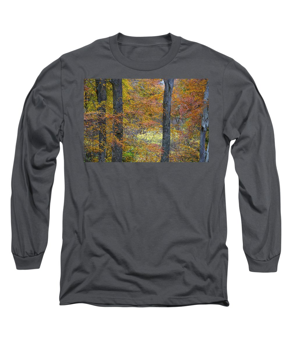 Fall Long Sleeve T-Shirt featuring the photograph Autumn Colours by Phil Crean