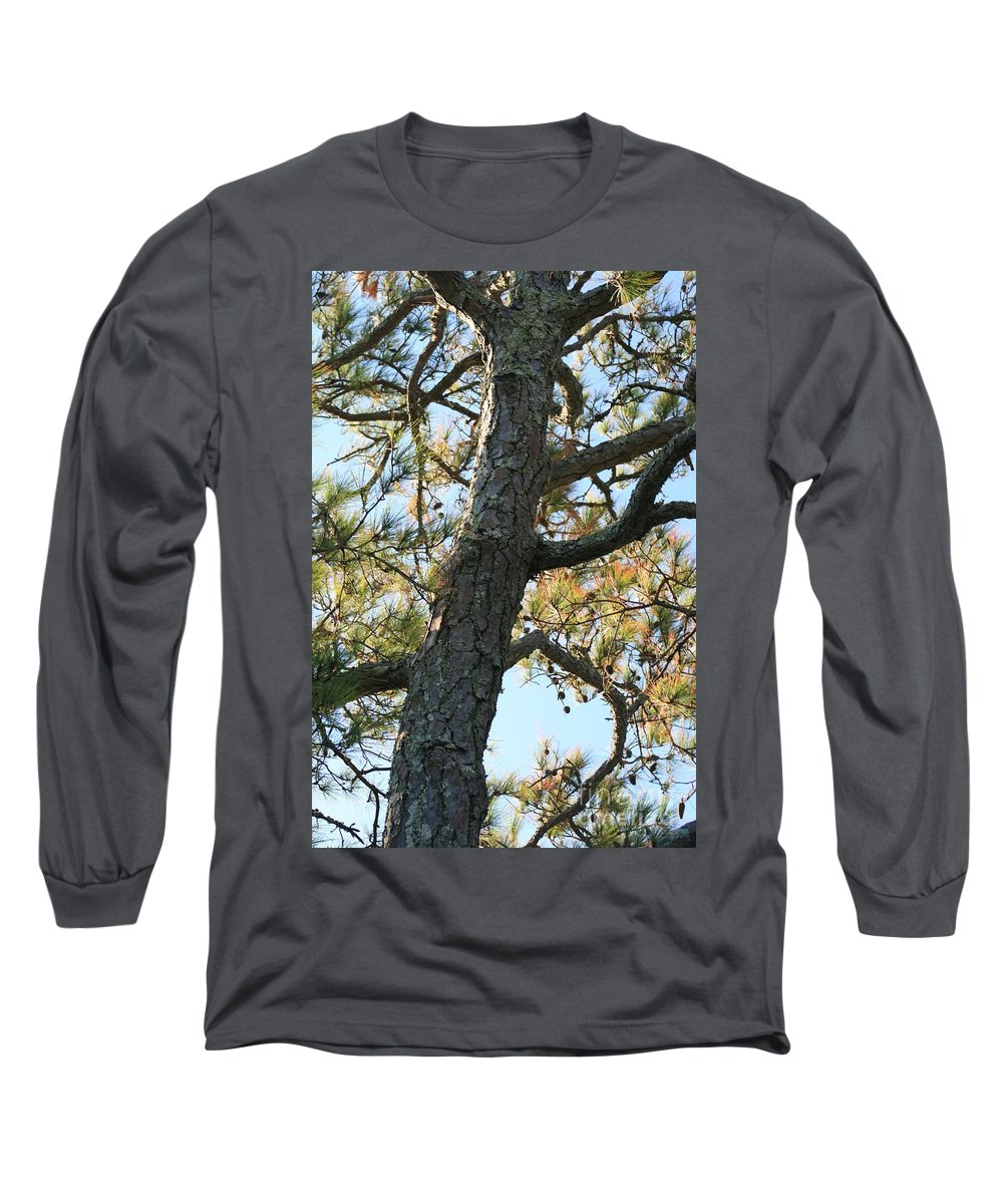 Tree Long Sleeve T-Shirt featuring the photograph Bald Head Tree by Nadine Rippelmeyer