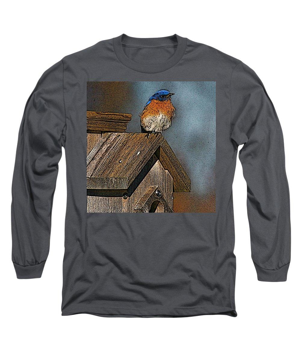 Blue Bird Long Sleeve T-Shirt featuring the photograph Blue Bird Songs by Robert Pearson