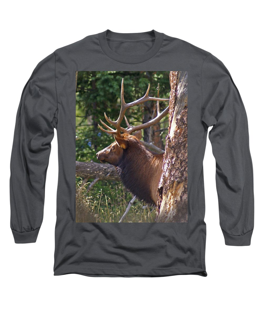 Elk Long Sleeve T-Shirt featuring the photograph Bull Elk 2 by Heather Coen