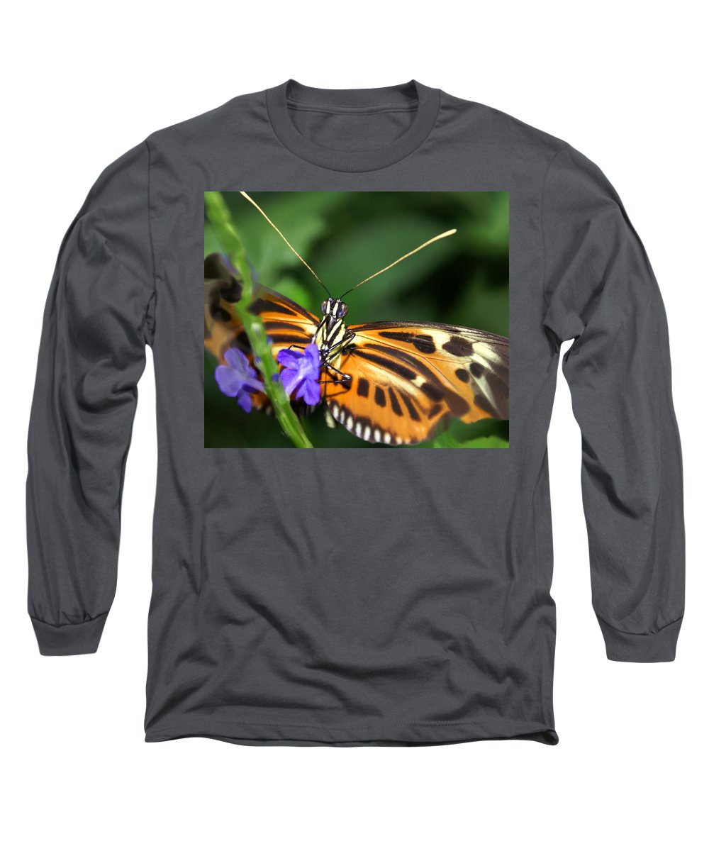 Butterfly Long Sleeve T-Shirt featuring the photograph Butterfly 2 Eucides Isabella by Heather Coen