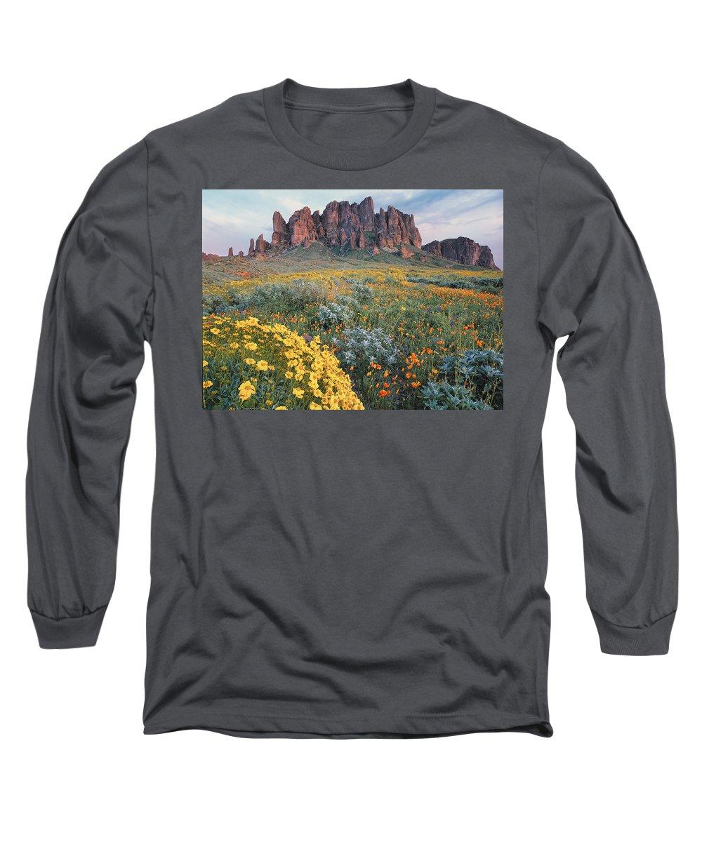 00175967 Long Sleeve T-Shirt featuring the photograph California Brittlebush Lost Dutchman by Tim Fitzharris