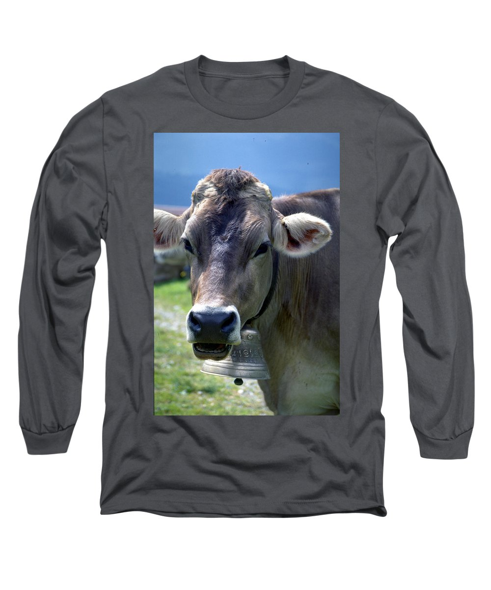 Cow Long Sleeve T-Shirt featuring the photograph Cow by Flavia Westerwelle